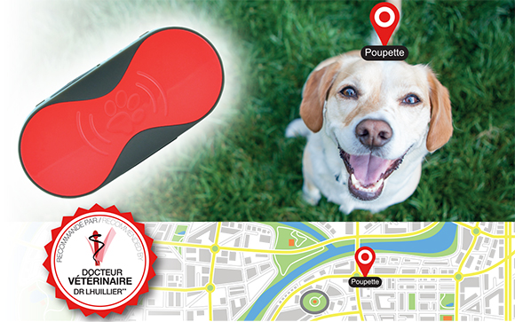 gps-pet-tracker-thomson-poupette